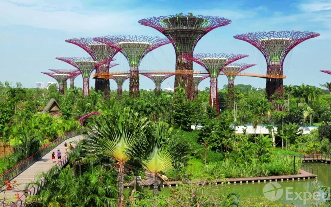 Singapore Video Travel Guide | Expedia Asia