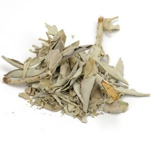 White Sage Leaf Whole Wildcrafted - 1 lb | 202288 01 15