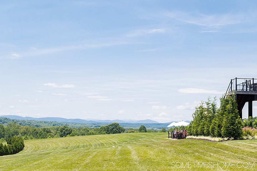 Winery tasting room view of the Blue Ridge Mountains.