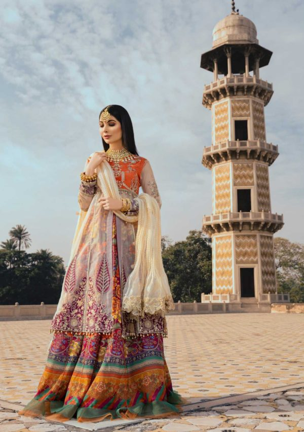 Sanaya Luxury Chiffon Collection – D – 03 Sanaya Luxury Chiffon Collection - Original [tag]