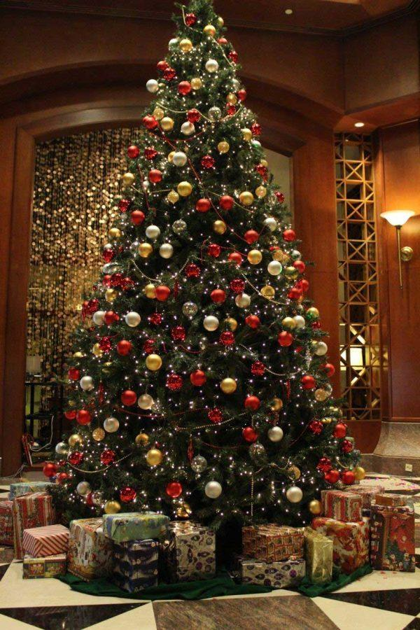Your Guide To The Best Christmas Trees This Season The Milford