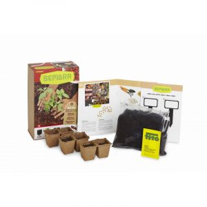 My First Cherry Tomato Growing Kit