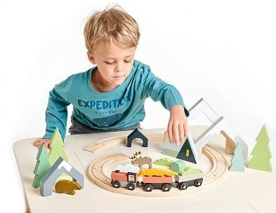 boy with wooden treetops train set by Tender Leaf Toys