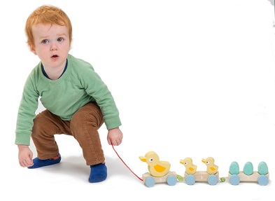 lifestyle wooden duck toy pull along