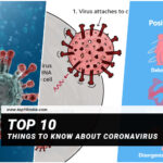 10 Things To Know About Coronavirus
