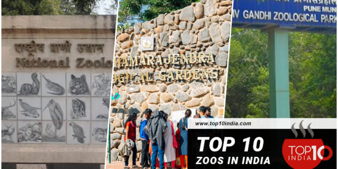 Top 10 Zoos in India
