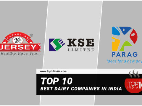 Top 10 Best Dairy Companies In India
