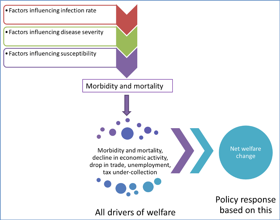 Morbidity mortality policy options June 2020