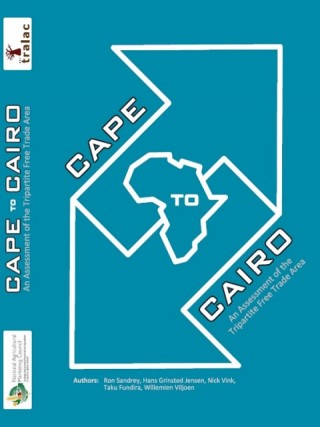 Cape to Cairo – An Assessment of the Tripartite Free Trade Area