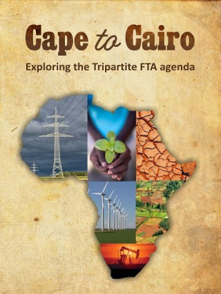 Cape to Cairo: Exploring the Tripartite FTA Agenda