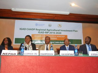 Stakeholders meet to review the IGAD Regional Investment Plan 2016-2020
