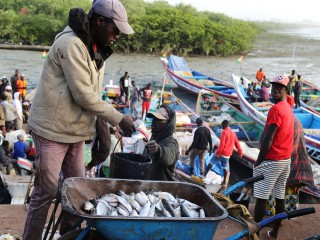 Overfishing destroying livelihoods