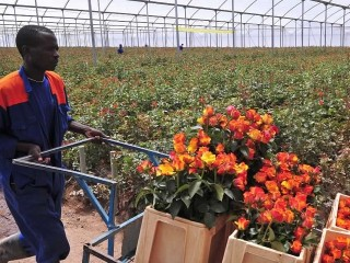 Kenya: Exports to Africa can spur industry – Biwott