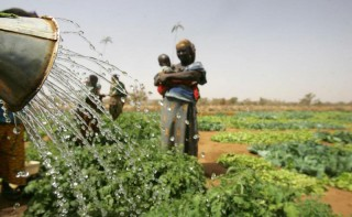 UN labour agency calls for major investment in rural Africa as key to prosperity