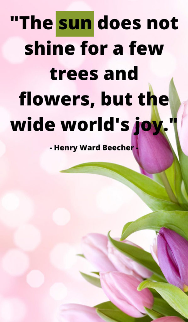 The sun does not shine for a few trees and flowers, but the wide world's joy. Sunshine quotes, quotes about sunshine, positive quotes, inspirational quotes, motivational quotes, sunny, beach, wellness, self help, calm, happy, smile, Instagram captions.