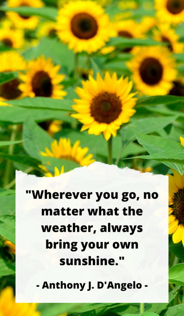 """""""Wherever you go, no matter what the weather, always bring your own sunshine."""