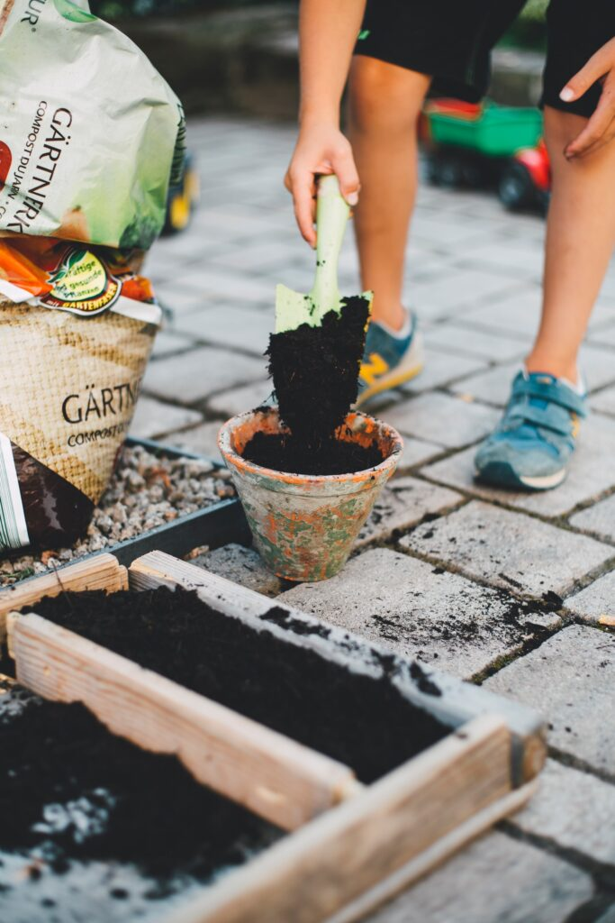 gardening-to-help-increase-home-value