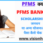 FULL FORM PFMS KYA HAI IN HINDI