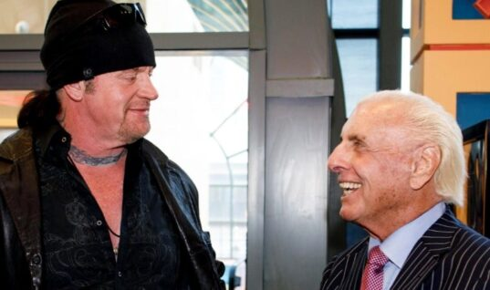 Ric Flair Thinks The Undertaker Will Wrestle Again