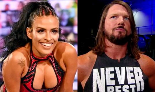 Multiple WWE Talents Stop Streaming On Twitch and Taking Cameo Requests