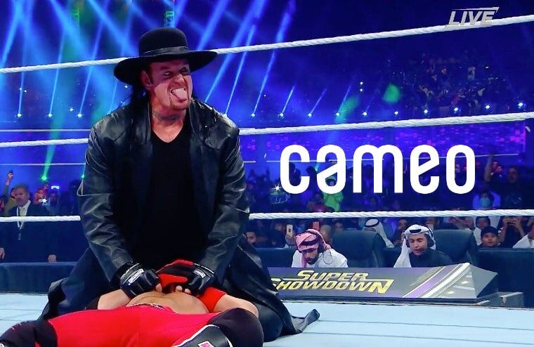 Cameo Video Messages From The Undertaker Available For Big Money