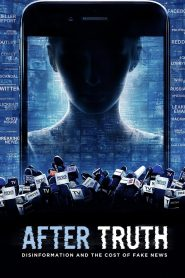 After Truth: Disinformation and the Cost of Fake News (2020)