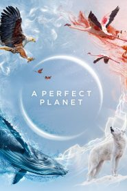 A Perfect Planet (2021)