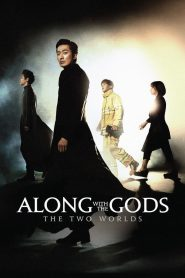 Along with the Gods: The Two Worlds (2017)