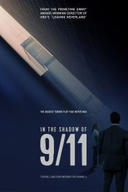 In the Shadow of 9/11 (2021)