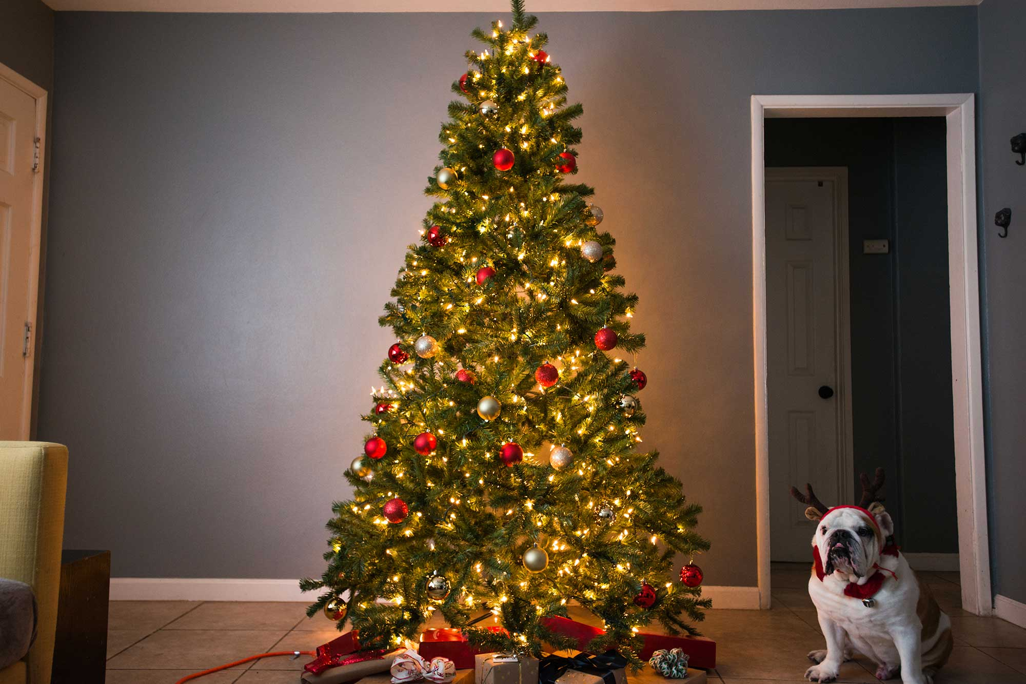 The Best Artificial Christmas Tree Of 2020 Your Best Digs