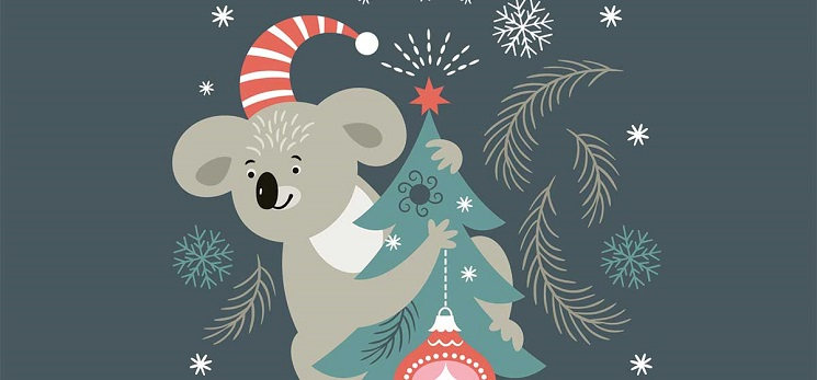 Adelaide family returns home to find koala perched on Christmas tree i