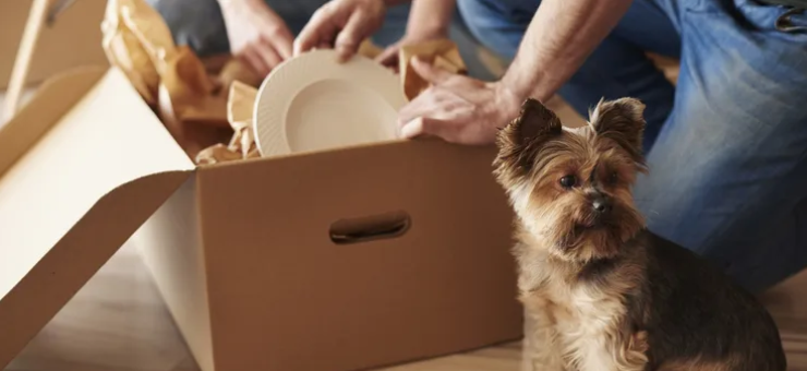 The emotional aspects of moving house in retirement
