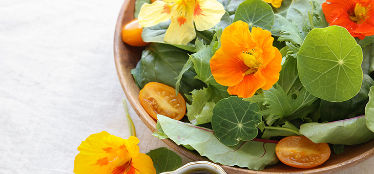 Edible flowers that will colour your salads – and your garden