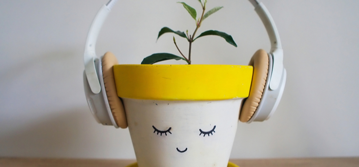 Plant listening to music